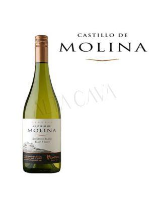 Castillo de Molina Sauvignon Blanc Elqui. Viña San Pedro
