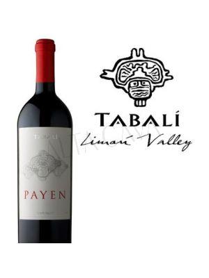 Tabalí Payen Syrah 2011